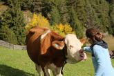 Tierbauernhof mit Kuhhaltung