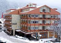 Hotel Seiserhof ***s