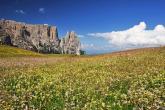 Ihr Wanderprofi in den Dolomiten