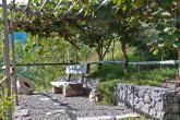 Urlaub auf dem Bauernhof - Pflanzer Hof ✿✿✿✿