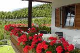 Farm holidays - Innermelaunhof ✿✿