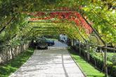 Garni Hotel Rebhof - Herzlich Willkommen